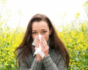 spring allergy season